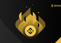 12th BNB Burn | Quarterly Highlights and Three-Year Review from CZ