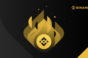 12th BNB Burn   Quarterly Highlights and Three-Year Review from CZ