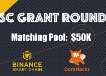 The 1st Round of Quadratic Funding Grant now live on Binance Smart Chain
