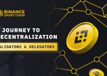 A Journey to Decentralization: Validators & Delegators