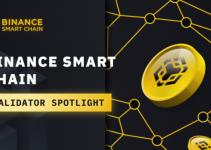 BSC Validator Spotlight: BscScan