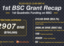 The 1st BSC Grant Recap: $780k Contributed to 108 Global Projects