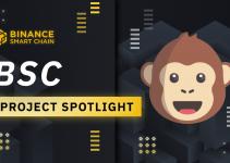 BSC Project Spotlight: ApeSwap