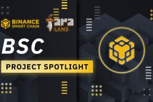 BSC Project Spotlight: Faraland