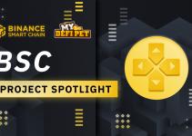 BSC Project Spotlight: My DeFi Pet