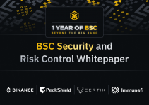 Beyond the Big Bang: Security and Risk Control Whitepaper v1.0