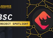 BSC Project Spotlight: BinaryX and CyberDragon