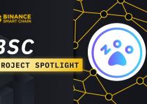 BSC Project Spotlight: ZOO Crypto World